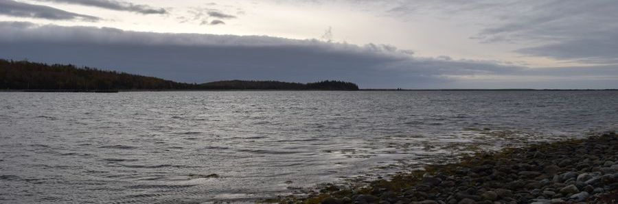 How Can the Province of Nova Scotia Protect Its Coast?