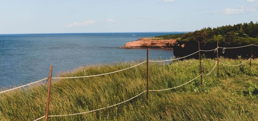 Why Legislate Environmental Rights on Prince Edward Island: Part One
